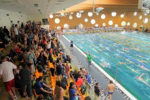 Grand Prix - Puchar Polski w pływaniu09-10 maja 2015r.fot. Bogusław Kwaitkowski0442
