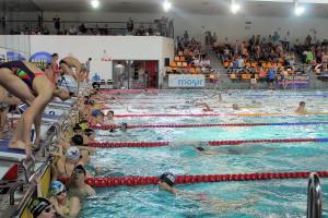 Grand Prix - Puchar Polski w pływaniu09-10 maja 2015r.fot. Bogusław Kwaitkowski0453