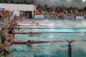 Grand Prix - Puchar Polski w pływaniu09-10 maja 2015r.fot. Bogusław Kwaitkowski0455