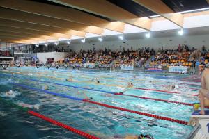 Grand Prix - Puchar Polski w pływaniu09-10 maja 2015r.fot. Bogusław Kwaitkowski0462