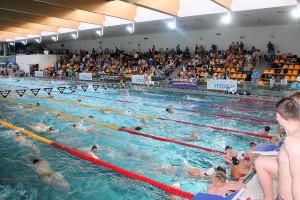 Grand Prix - Puchar Polski w pływaniu09-10 maja 2015r.fot. Bogusław Kwaitkowski0463