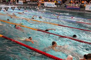 Grand Prix - Puchar Polski w pływaniu09-10 maja 2015r.fot. Bogusław Kwaitkowski0464
