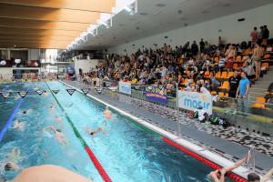 Grand Prix - Puchar Polski w pływaniu09-10 maja 2015r.fot. Bogusław Kwaitkowski0465