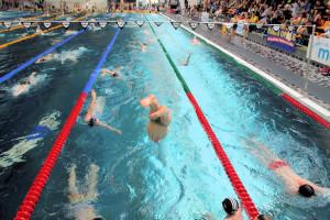 Grand Prix - Puchar Polski w pływaniu09-10 maja 2015r.fot. Bogusław Kwaitkowski0466