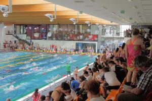 Grand Prix - Puchar Polski w pływaniu09-10 maja 2015r.fot. Bogusław Kwaitkowski0467