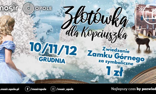 """""""Złotówka dla Kopciuszka""""- edycja zimowa"""